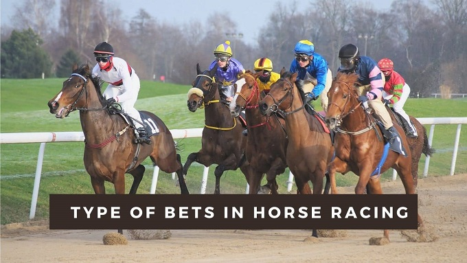 What are the type of bets in horse racing?