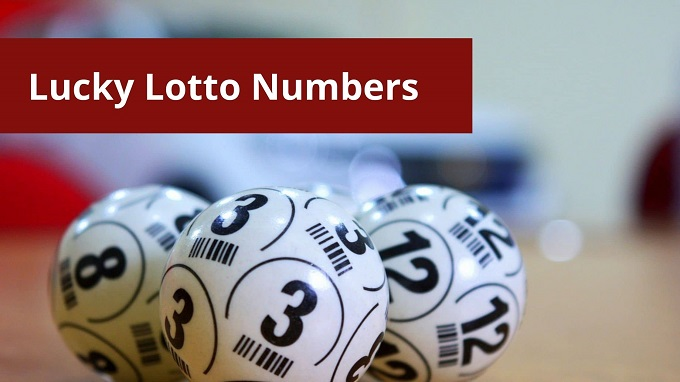 lucky lotto numbers